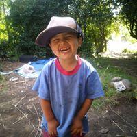 Foto del perfil de Rocio Cortes murguia